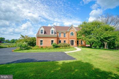 Waterford Single Family Home For Sale: 16115 Hamilton Station Road