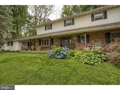 Sinking Spring Single Family Home For Sale: 226 Wheatfield Road