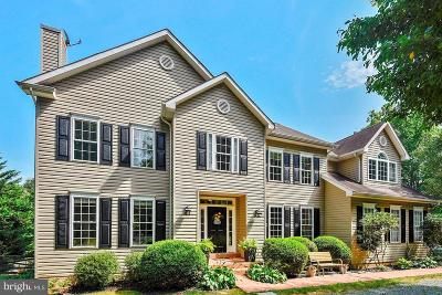 Leesburg Single Family Home For Sale: 20500 Norman Place