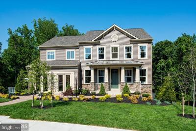 Prince William County Single Family Home For Sale: 19223 Stoney Ridge Place