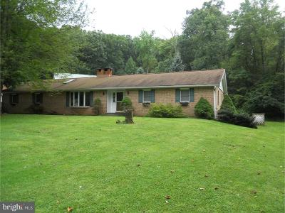 Mohnton Single Family Home For Sale: 1031 Maple Grove Road