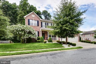 Elkton Single Family Home For Sale: 4 Henry Way