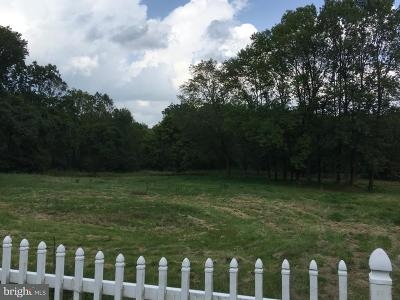 Bucks County Residential Lots & Land For Sale: 9755 Easton Road