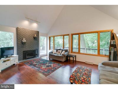 Phoenixville Single Family Home For Sale: 477 Willann Drive