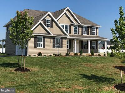 Chambersburg Single Family Home For Sale: 2380 Somerset Road