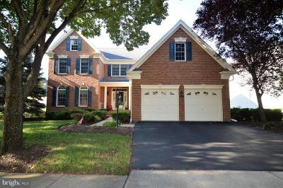 Haymarket Single Family Home For Sale: 5205 Blossom Hill Drive