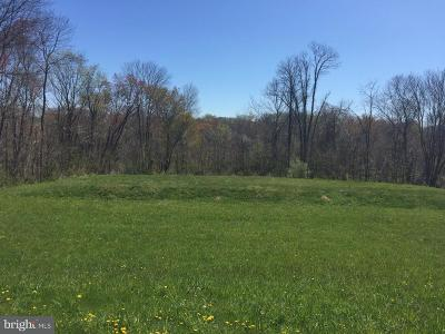Residential Lots & Land For Sale: 121 Ridings Way