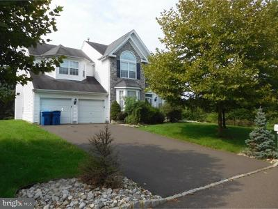 New Hope Single Family Home For Sale: 538 Tori Court