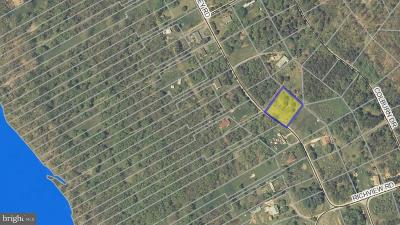 Frederick County, Harrisonburg City, Page County, Rockingham County, Shenandoah County, Warren County, Winchester City Residential Lots & Land For Sale: River Valley Road