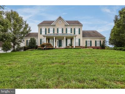 Back Creek Single Family Home For Sale: 134 Cazier Court