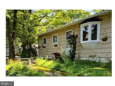 Pipersville Single Family Home For Sale: 5616 Stump Road
