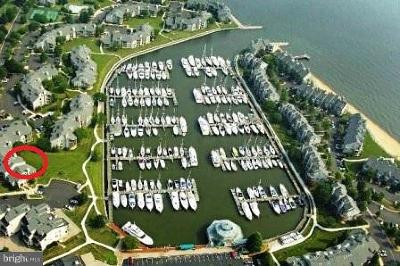 Anne Arundel County Condo For Sale: 7052 Harbour Village Court #T-2