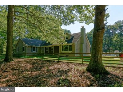 Atlantic County Single Family Home For Sale: 191 4th Avenue