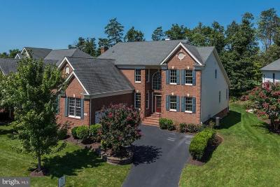Ashburn Single Family Home For Sale: 20093 Whistling Straits Place