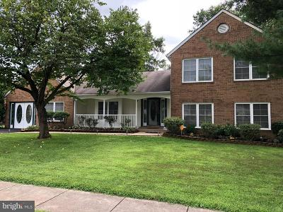 Sterling Single Family Home For Sale: 314 Silver Ridge Drive