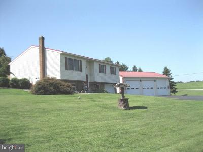 Newville Single Family Home For Sale: 623 Mohawk Road