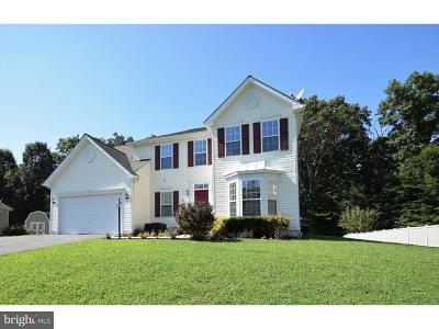 North East Single Family Home For Sale: 211 Bethel Springs Drive