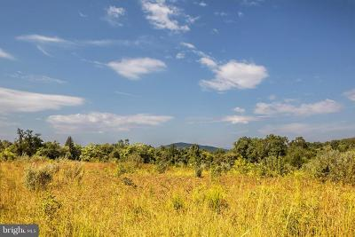 Rappahannock County Residential Lots & Land For Sale: Viewtown