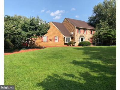 Harleysville Single Family Home For Sale: 224 Shadynook Hill Road