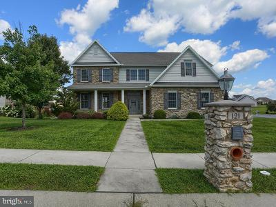 Dauphin County Single Family Home For Sale: 121 Koch Ln L23