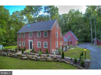 Bucks County Single Family Home For Sale: 573 Haycock Run Road
