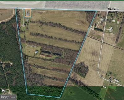 Farm For Sale: 33793 Line Road