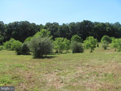 Cumberland County Residential Lots & Land For Sale: Lot 7 N Old Stone House Road