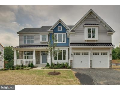 Chalfont Single Family Home For Sale: 3559 Pickertown Road
