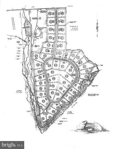 Middletown Residential Lots & Land For Sale: 221 Bohemia Mill Pond Drive
