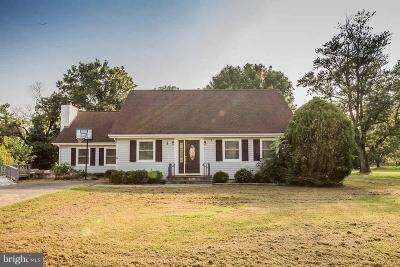 Culpeper County Single Family Home For Sale: 19536 Williams Drive