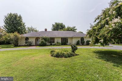 Talbot County Single Family Home For Sale: 4595 Boone Creek Road