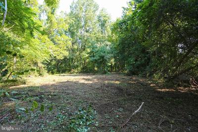 Harford County Residential Lots & Land For Sale: 1013 Carsins Run Road