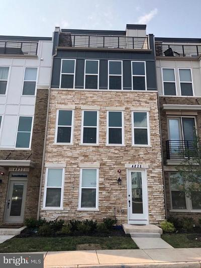 Chantilly Townhouse For Sale: 4828 Garden View Lane