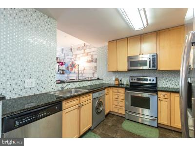 Rittenhouse Square Condo For Sale: 111 S 15th Street #1710