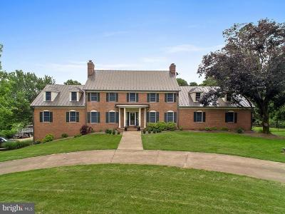 Leesburg Single Family Home For Sale: 19588 Loudoun Orchard Road