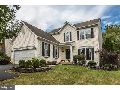 Bucks County Single Family Home For Sale: 103 Lakeview Drive