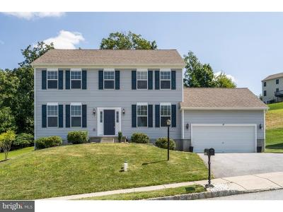 Downingtown Single Family Home For Sale: 3368 Alydar Road
