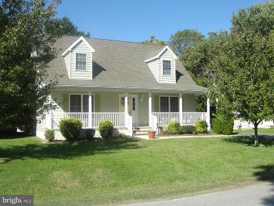 Rehoboth Beach Single Family Home For Sale: 101 Shady Ridge Drive