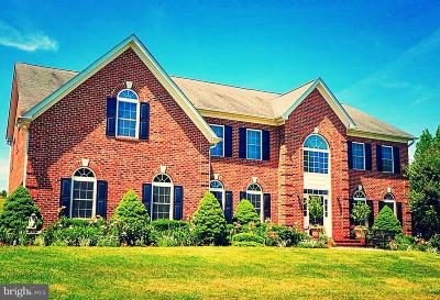 Dunkirk Single Family Home For Sale: 12010 Longleaf Lane