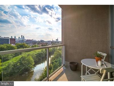 Northern Liberties Condo For Sale: 901 N Penn Street #P503