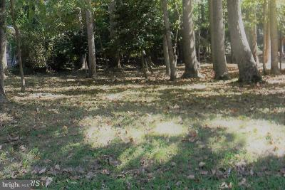 Calvert County, Saint Marys County, Charles County Residential Lots & Land For Sale: 12944 Pine Lane