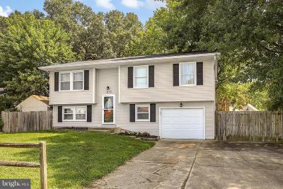 Waldorf Single Family Home For Sale: 813 Belfast Road