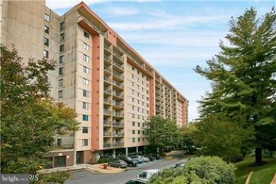 Falls Church Condo For Sale: 3800 Powell Lane #1112