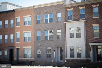 Rockville Townhouse For Sale: 14338 Potomac Heights Lane