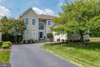 Ashburn Single Family Home For Sale: 19947 Palmer Classic Parkway