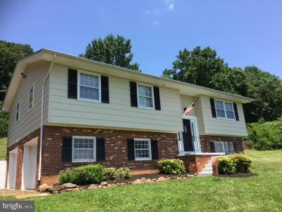 Rappahannock County Single Family Home For Sale: 25 Battle Mountain Road