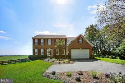 Mount Airy Single Family Home For Sale: 16621 Frederick Road