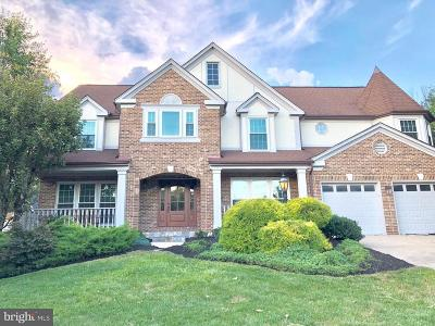 Ashburn Single Family Home For Sale: 43554 Coal Bed Court