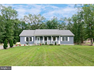 Atlantic County Single Family Home For Sale: 414 11th Street