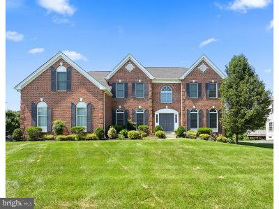 New Castle County Single Family Home For Sale: 45 Waterton Drive